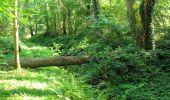 Randonnée Marche LONGPONT - en forêt de Retz_39_Longpont_Villers-Cotterets_AR - Photo 248