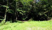 Randonnée Marche LONGPONT - en forêt de Retz_39_Longpont_Villers-Cotterets_AR - Photo 185