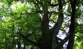 Randonnée Marche LONGPONT - en forêt de Retz_39_Longpont_Villers-Cotterets_AR - Photo 58