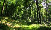 Randonnée Marche LONGPONT - en forêt de Retz_39_Longpont_Villers-Cotterets_AR - Photo 50