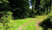 Randonnée Marche LONGPONT - en forêt de Retz_39_Longpont_Villers-Cotterets_AR - Photo 175