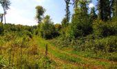 Randonnée Marche LONGPONT - en forêt de Retz_39_Longpont_Villers-Cotterets_AR - Photo 177