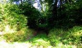 Randonnée Marche LONGPONT - en forêt de Retz_39_Longpont_Villers-Cotterets_AR - Photo 31