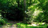 Randonnée Marche LONGPONT - en forêt de Retz_39_Longpont_Villers-Cotterets_AR - Photo 193
