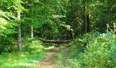 Randonnée Marche LONGPONT - en forêt de Retz_39_Longpont_Villers-Cotterets_AR - Photo 214