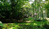 Randonnée Marche LONGPONT - en forêt de Retz_39_Longpont_Villers-Cotterets_AR - Photo 21