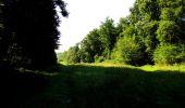 Randonnée Marche LONGPONT - en forêt de Retz_39_Longpont_Villers-Cotterets_AR - Photo 84