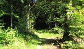 Randonnée Marche LONGPONT - en forêt de Retz_39_Longpont_Villers-Cotterets_AR - Photo 233