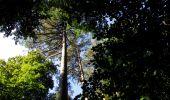 Randonnée Marche LONGPONT - en forêt de Retz_39_Longpont_Villers-Cotterets_AR - Photo 94