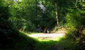 Randonnée Marche LONGPONT - en forêt de Retz_39_Longpont_Villers-Cotterets_AR - Photo 29