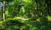 Randonnée Marche LONGPONT - en forêt de Retz_39_Longpont_Villers-Cotterets_AR - Photo 45