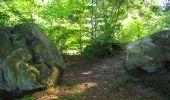 Randonnée Marche LONGPONT - en forêt de Retz_39_Longpont_Villers-Cotterets_AR - Photo 132
