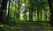 Randonnée Marche LONGPONT - en forêt de Retz_39_Longpont_Villers-Cotterets_AR - Photo 53