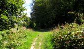 Randonnée Marche LONGPONT - en forêt de Retz_39_Longpont_Villers-Cotterets_AR - Photo 126