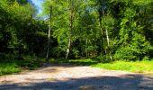 Randonnée Marche LONGPONT - en forêt de Retz_39_Longpont_Villers-Cotterets_AR - Photo 208