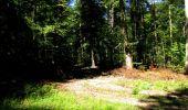 Randonnée Marche LONGPONT - en forêt de Retz_39_Longpont_Villers-Cotterets_AR - Photo 142