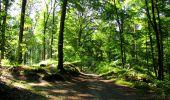 Randonnée Marche LONGPONT - en forêt de Retz_39_Longpont_Villers-Cotterets_AR - Photo 75