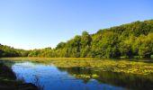 Randonnée Marche LONGPONT - en forêt de Retz_39_Longpont_Villers-Cotterets_AR - Photo 200