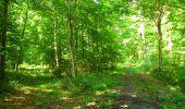Randonnée Marche LONGPONT - en forêt de Retz_39_Longpont_Villers-Cotterets_AR - Photo 218