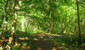 Randonnée Marche LONGPONT - en forêt de Retz_39_Longpont_Villers-Cotterets_AR - Photo 217