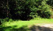 Randonnée Marche LONGPONT - en forêt de Retz_39_Longpont_Villers-Cotterets_AR - Photo 156
