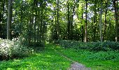 Randonnée Marche LONGPONT - en forêt de Retz_39_Longpont_Villers-Cotterets_AR - Photo 69