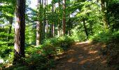 Randonnée Marche LONGPONT - en forêt de Retz_39_Longpont_Villers-Cotterets_AR - Photo 92