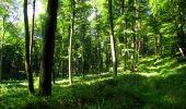 Randonnée Marche LONGPONT - en forêt de Retz_39_Longpont_Villers-Cotterets_AR - Photo 48