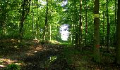 Randonnée Marche LONGPONT - en forêt de Retz_39_Longpont_Villers-Cotterets_AR - Photo 20