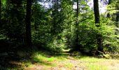Randonnée Marche LONGPONT - en forêt de Retz_39_Longpont_Villers-Cotterets_AR - Photo 73