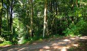Randonnée Marche LONGPONT - en forêt de Retz_39_Longpont_Villers-Cotterets_AR - Photo 74