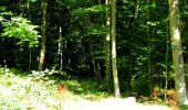 Randonnée Marche LONGPONT - en forêt de Retz_39_Longpont_Villers-Cotterets_AR - Photo 213