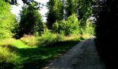 Randonnée Marche LONGPONT - en forêt de Retz_39_Longpont_Villers-Cotterets_AR - Photo 181