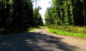 Randonnée Marche LONGPONT - en forêt de Retz_39_Longpont_Villers-Cotterets_AR - Photo 216