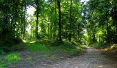 Randonnée Marche LONGPONT - en forêt de Retz_39_Longpont_Villers-Cotterets_AR - Photo 41
