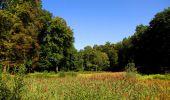 Randonnée Marche LONGPONT - en forêt de Retz_39_Longpont_Villers-Cotterets_AR - Photo 102