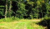 Randonnée Marche LONGPONT - en forêt de Retz_39_Longpont_Villers-Cotterets_AR - Photo 230