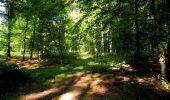 Randonnée Marche LONGPONT - en forêt de Retz_39_Longpont_Villers-Cotterets_AR - Photo 18