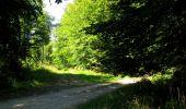 Randonnée Marche LONGPONT - en forêt de Retz_39_Longpont_Villers-Cotterets_AR - Photo 182