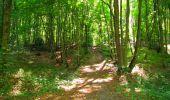 Randonnée Marche LONGPONT - en forêt de Retz_39_Longpont_Villers-Cotterets_AR - Photo 135