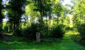 Randonnée Marche LONGPONT - en forêt de Retz_39_Longpont_Villers-Cotterets_AR - Photo 26
