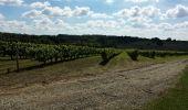 Trail Walk BIGNAY - Bignay (17) - Photo 8