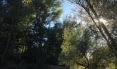 Randonnée Marche BANYULS-DELS-ASPRES - 66 LE BOULOU - plans, pla et hameau de NIDOLÈRES, noeud autoroutier ferroviaire  - Photo 7