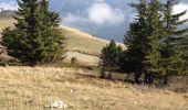 Trail Walk HABERE-LULLIN - Crêts des Brottets et d'Hirmentaz - Photo 3