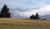 Trail Walk HABERE-LULLIN - Crêts des Brottets et d'Hirmentaz - Photo 1