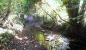Trail Walk LA NOE-POULAIN - Chemin de la Fontain Sucrée - Photo 1
