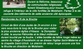 Trail Other activity SCHIRMECK - Grand Est - Ligne 18 Schirmeck-la-Broque Strasbourg - Photo 51