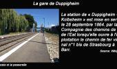 Trail Other activity SCHIRMECK - Grand Est - Ligne 18 Schirmeck-la-Broque Strasbourg - Photo 74