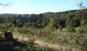 Trail Walk Houffalize - La Roche Plate - Photo 23