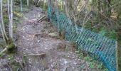 Trail Walk Houffalize - La Roche Plate - Photo 4